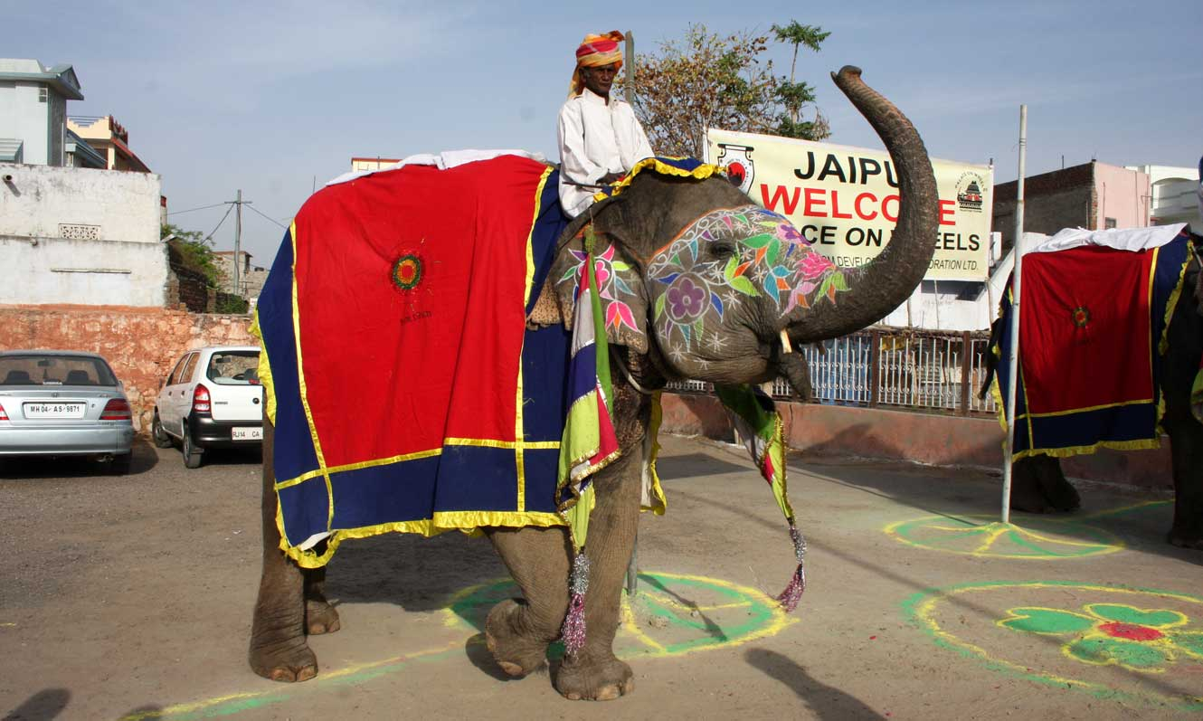 Traditional Welcome in Jaipur